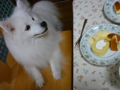 おうちカフェ♪