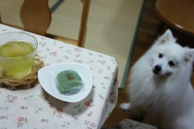 これを食べる前はシフォンケーキを食べてたですよ