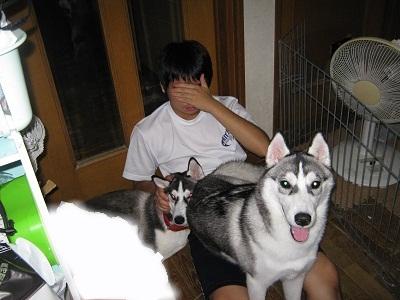 snap_cherimiru_201211193353.jpg
