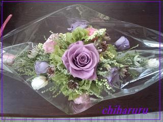 IMG_20120609_172732.jpg