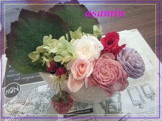 IMG_20120728_103433.jpg