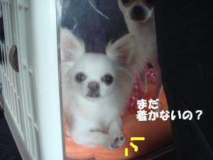 蟆城未+237_convert_20120709110836