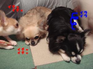 蟆城未+301_convert_20120710104639