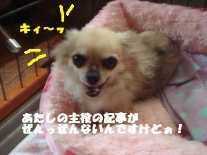 蟆城未+253_convert_20120710105706