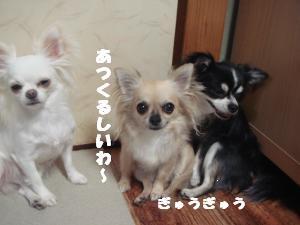 蟆城未+297_convert_20120712112044