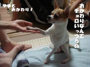 蟆城未+378_convert_20120717102950