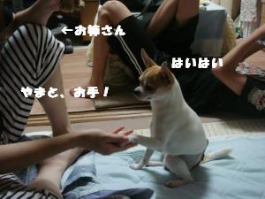 蟆城未+377_convert_20120717102909