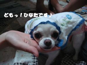 蟆城未+356_convert_20120717103809