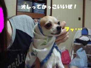 蟆城未+353_convert_20120717104107
