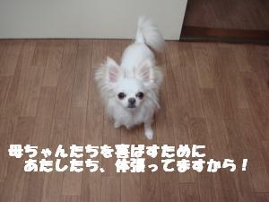 蟆城未+372_convert_20120717103232