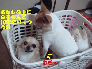 蟆城未+420_convert_20120724140853