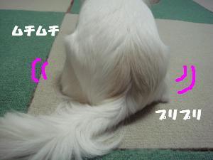 蟆城未+436_convert_20120724140515