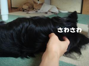 蟆城未+450_convert_20120726111830