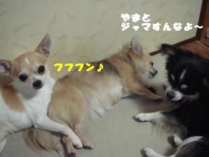 蟆城未+455_convert_20120726114325
