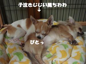 蟆城未+442_convert_20120727101848