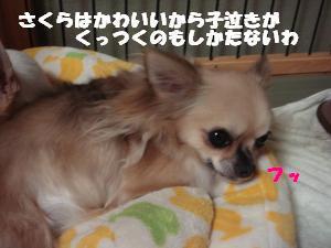 蟆城未+451_convert_20120727101817