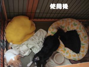 蟆城未+469_convert_20120727101710