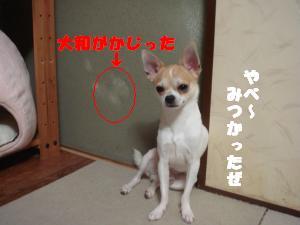 蟆城未+476_convert_20120730105653