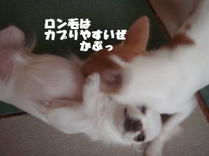 蟆城未+551_convert_20120801132548