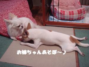 蟆城未+540_convert_20120801132158