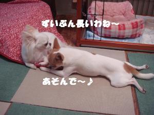 蟆城未+538_convert_20120801132101