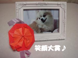 蟆城未+580_convert_20120806112033