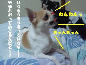 蟆城未+616_convert_20120807110637