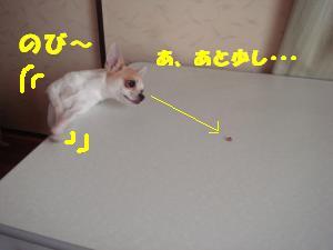 蟆城未+672_convert_20120809130546