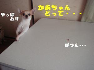 蟆城未+673_convert_20120809130612
