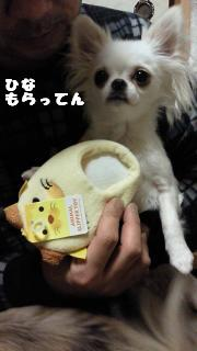 縺イ縺ェ縺・・・・雲convert_20120810133030