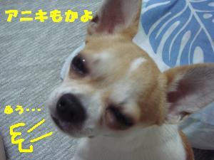 蟆城未+630_convert_20120810154350