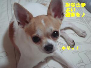 蟆城未+667_convert_20120810154450