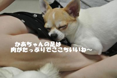 蟆城未+714_convert_20120817150210