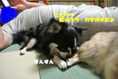 蟆城未+724_convert_20120820100524