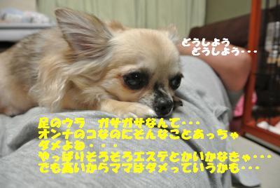 蟆城未+726_convert_20120820100632