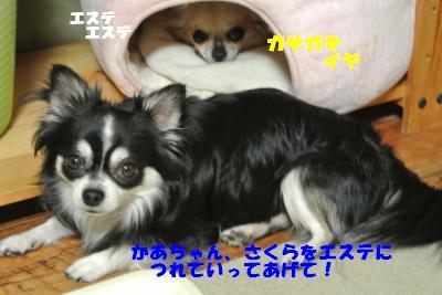 蟆城未+731_convert_20120820100732