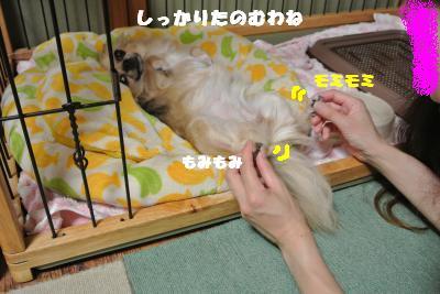 蟆城未+733_convert_20120820100806