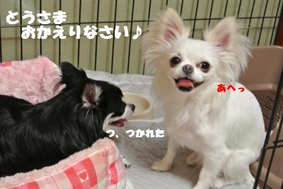蟆城未+793_convert_20120822145213
