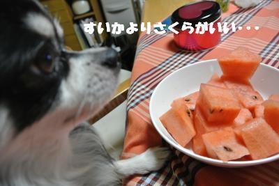 蟆城未+825_convert_20120823105256