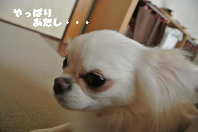 蟆城未+912_convert_20120829102419
