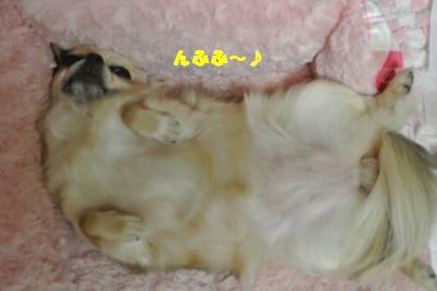 蟆城未+926_convert_20120830093341
