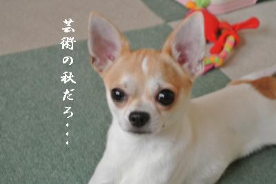 蟆城未+940_convert_20120904113634