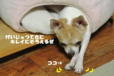 蟆城未+932_convert_20120904113155