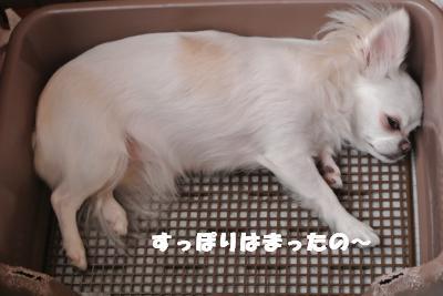 蟆城未+938_convert_20120904113443