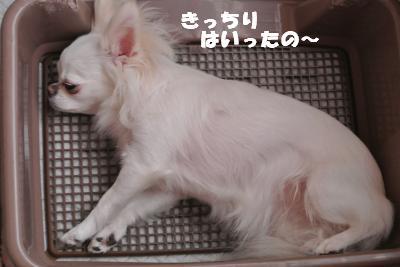 蟆城未+937_convert_20120904113413