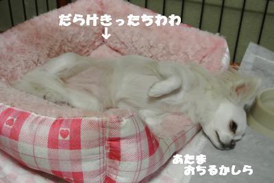 蟆城未+989_convert_20120907110945