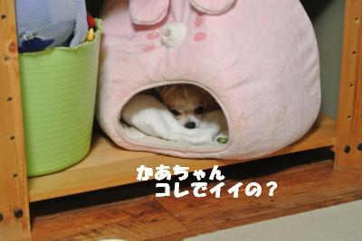 蟆城未+979_convert_20120907112137