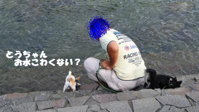 蟆城未+1100_convert_20120920103802