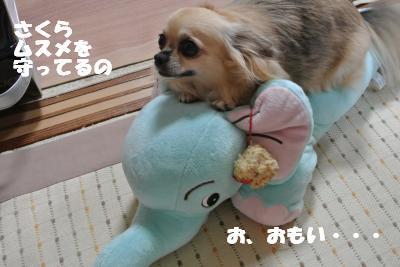 蟆城未+1121_convert_20121001132051