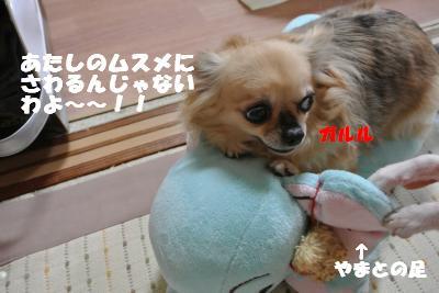 蟆城未+1122_convert_20121001132120